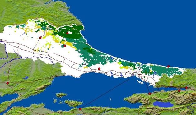 Gürcü Haber Tiflis'te ve İstanbul'da heyecan yaratan projenin detaylarını açıklıyor!