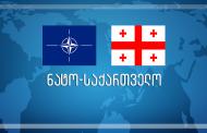 Nato Gemileri Batumi Limanı'nda